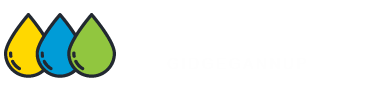 Carpet Cleaning Gidgegannup